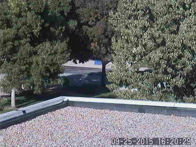FRCC Larimer Campus weather camera image